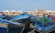 Gallery_Essaouira_0014