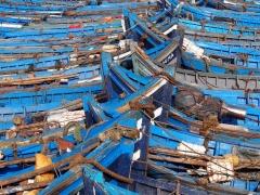 Gallery_Essaouira_0018