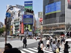Gallery_Tokyo10