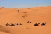 MoroccoLandscapes_0007